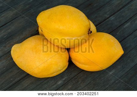 Yellow mango on wooden table background. Bunch of tropical fruits. Oval yellow mango pile. Sweet dessert or vegetarian food. Exotic mango closeup photo. Whole exotic fruit mango. Delicious juicy fruit