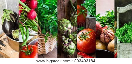 Collage set fresh organic vegetables herbs. Ripe tomatoes radish green beans artichokes thyme parsley egglants. Summer autumn fall harvest farmer's market organic produce.