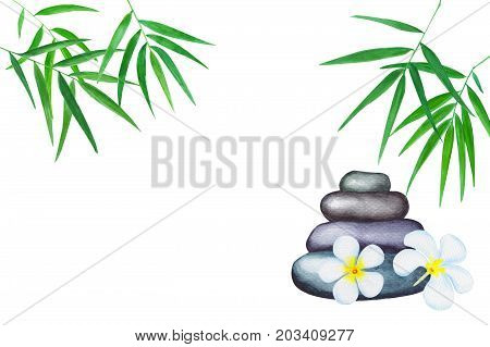 Green bamboo leaves watercolor illustration. Handdrawn zen background. Oriental banner template with text place. Tropical leaf decor. Bamboo leaf and sea pebbles. White frangipani. Wellness backdrop