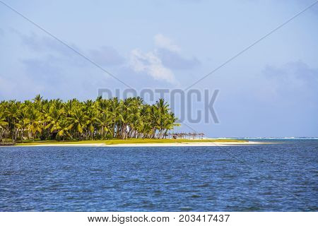 Beautiful tropical beach coconut palm tree and blue sea water in island Mauritius Indian Ocean