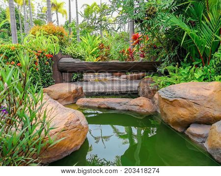 Beautiful landscaping in a home and garden