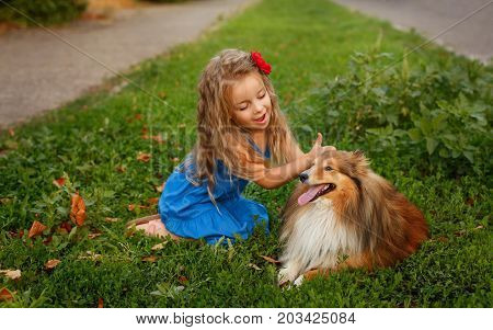 Cute little girl with a dog Sheltie breed. Best friends forever. Dog devotion. A girl and a pet in the park. She is petting the dog