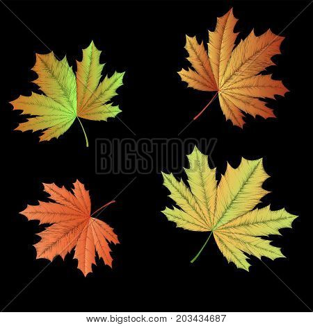 Embroidered autumn maple leaves on black background. Vector illustration.