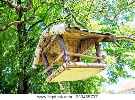 Wooden bird house hanging on the green tree. Seasonal natural scene. Ornithology theme. Detailed natural scene.