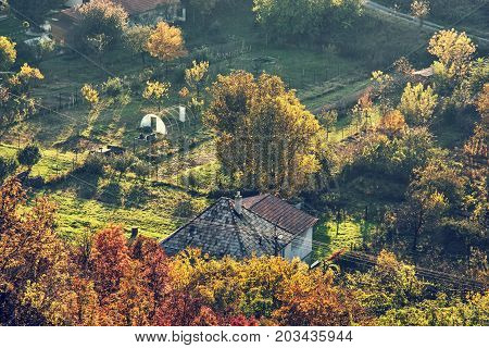 Close up photo of rural scene. Seasonal natural theme. Vibrant colors. House and gardens. Living in symbiosis. Retro photo filter.