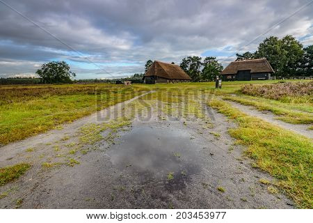 Traditional sheep cage with thatched cap on the heath at Heerde - Epe. A typical picture of a landscape on the Veluwe the vast natural reserve of the Netherlands