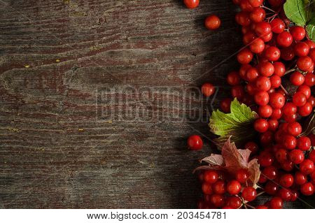 Rowan Berries On Vintage Wooden Boards With Copy Space