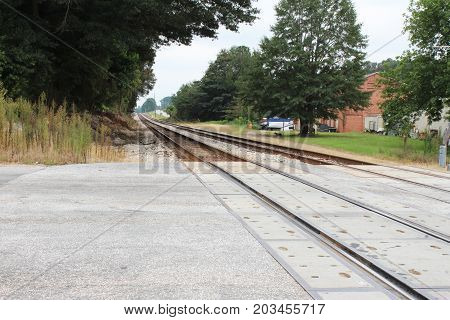 Train tracks running into the distance in a late summer landscape with trees, buildings, and a dog, horizontal aspect