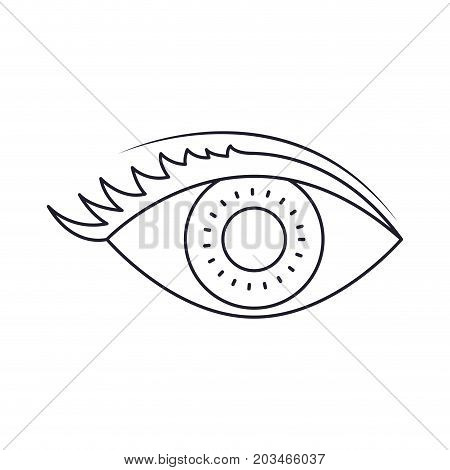 eye with eyelashes in monochrome silhouette vector illustration