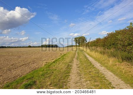 Yorkshire Wolds Farm Track