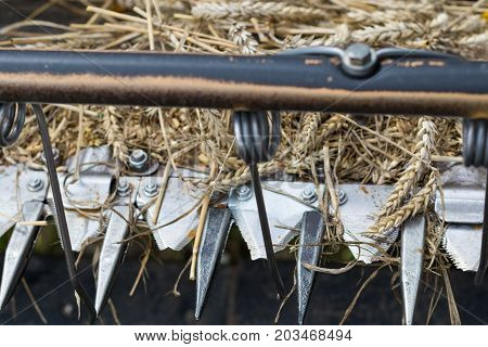 Detail of a front part of combine harvester with its pickers spikes and cutting blades. Wheat leftovers still in cutting mechanism.