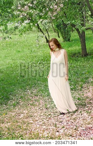 A beautiful girl in a long white dress is standing in the garden with blooming apple trees, looking down at the fallen pink petals.