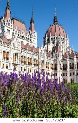 The neo-gothic Parliament of Eastern Europe's Hungary in the capital of Budapest with some flowers in the foreground