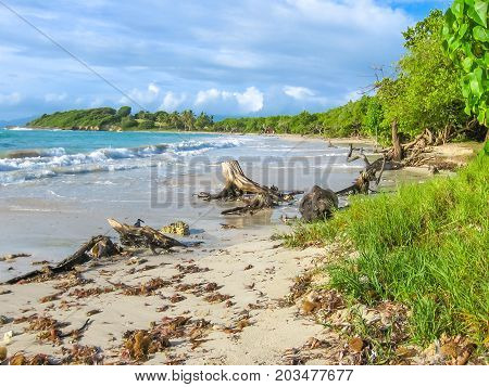 Spectacular wild coast of the island of Grande-Terre in Guadeloupe, Caribbean.