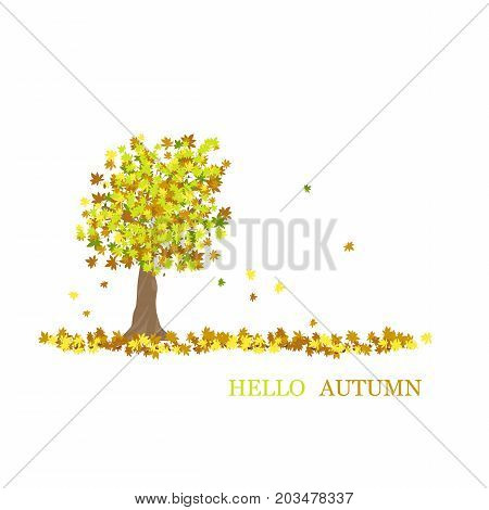 Hello autumn. chestnut with leaves in different autumn colors. Text: Hello autumn.