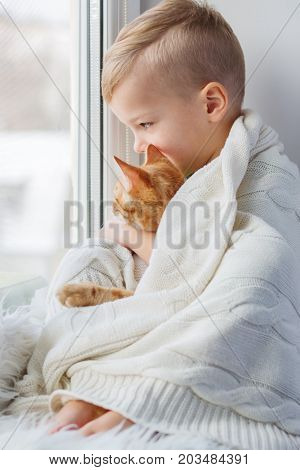 Little boy with cute cat at home. Embracing looking out of the window