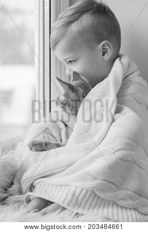 Little boy with cute cat at home. Embracing looking out of the window ( black and white )