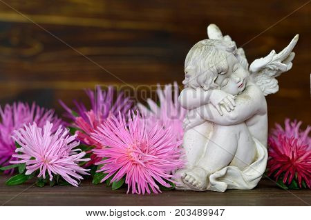 Sleeping guardian angel and pink flowers on wooden background