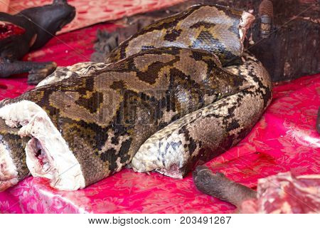Snake Meat At Market In Indonesia