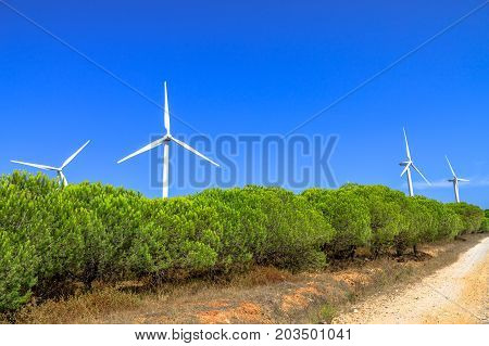Wind Turbines, alternative energy source. Landscape in Sagres, Algarve, Portugal of wind turbines rotating. Alternative energy, renewable energy and environmental sustainability. Sunny day in blue sky.