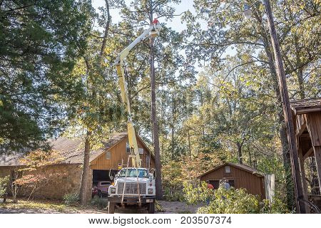 Bruce, MS USA - November 1 2017- A tree trimmer using a boom and bucket and a chainsaw to trim a tall pine tree.