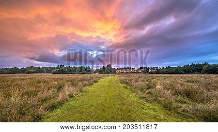 Trail Through Wild Natural Landscape Under Beautiful Sky