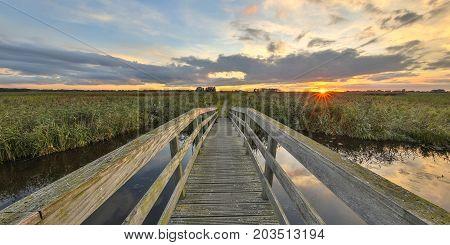 Wooden Bridge In Marshaland Nature Reserve