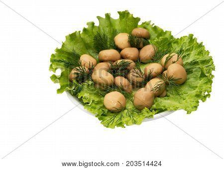 champignon mushrooms in lettuce leaves on a white background