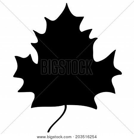 Maple leaf sign. Black plane icon isolated on white background. Mono nature logo. Botany wood or garden symbol. Ecology flat silhouette. Foliage mark. Stock vector illustration