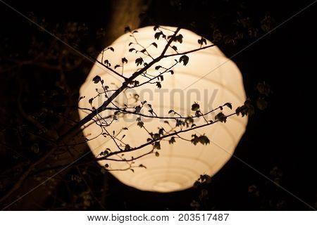 Rice Paper Lantern