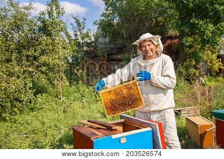 portrait of happy beekeeper holding a honeycomb full of bees. Beekeeper in protective workwear inspecting honeycomb frame at apiary. Beekeeping concept. Beekeeper harvesting honey
