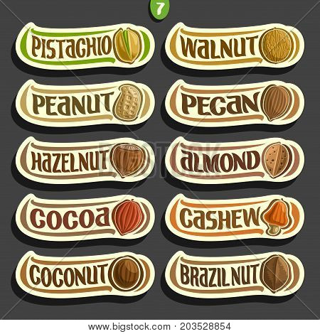 Vector Set of Nuts labels with text: 10 minimal signs of nuts fruit isolated on black background, set of cartoon simple stickers nut in nutshell for packing with original font, tags for snack food.