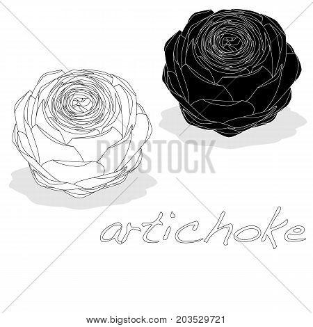 artichoke image isolated on white background .