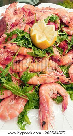 a fresh shrimps with salad and lemon