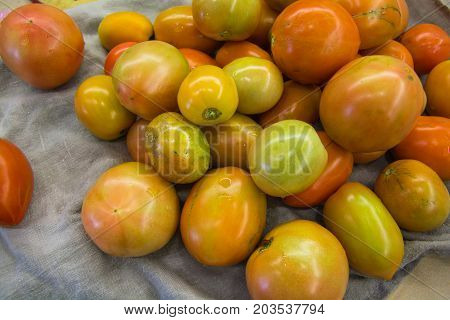 Group of fresh tomatoes on home kitchen. Different size and color.