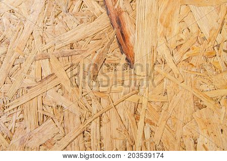 abstract Plywood for  texture and background .
