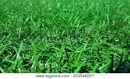 Artificial green grass - a modern surface for playgrounds close up selective focus