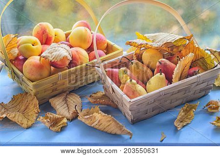 basket with fresh fruit stands on a window sill in bright sunlight, basket with fresh fruit stands on a window sill in bright sunlight