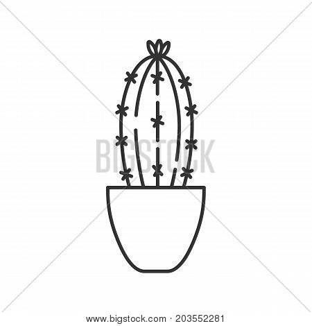 Cactus in flowerpot linear icon. Indoor plant thin line illustration. Succulent. Houseplant contour symbol. Vector isolated outline drawing