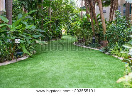 Landscape Of Pathway In The Beautiful Garden