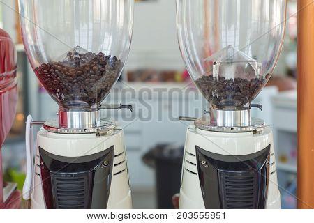 Coffee grinder preparing to grind coffee in cafe.