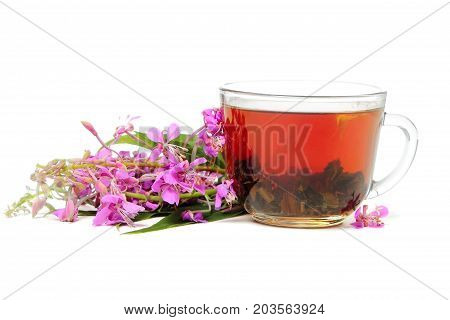 A cup of Ivan tea with flowers isolated on white background