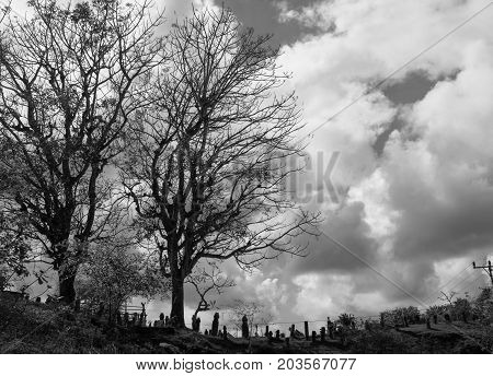 Black And White Silhouette Of Graveyard And Cloudy Sky On The Background