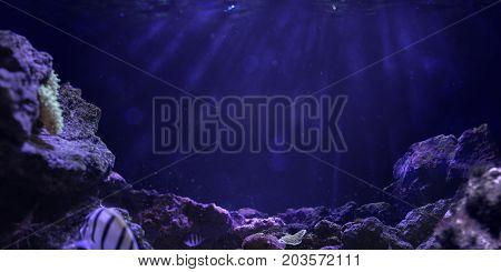 deep Underwater ocean background deep blue sea