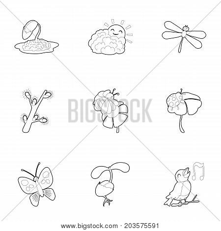 Summer fauna icons set. Outline set of 9 summer fauna vector icons for web isolated on white background