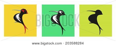 Elegant Woodpecker Bird logo. Editable vector in Color and in Black and White.