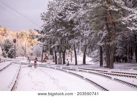 Railroad Tracks In Winter Forest, Traffic Light
