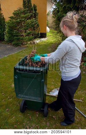 Girl with garden gloves cleaning autumn garden and putting dried dead leaves in a green eco recycling bin, Lyngby, Denmark April 25, 2010
