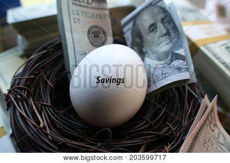 Savings & Investments With Egg & Money