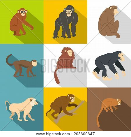 Different monkey icon set. Flat style set of 9 different monkey vector icons for web design